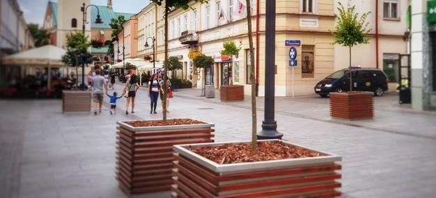 Ulica 3 Maja obsadzona nową zielenią (ZDJĘCIA)