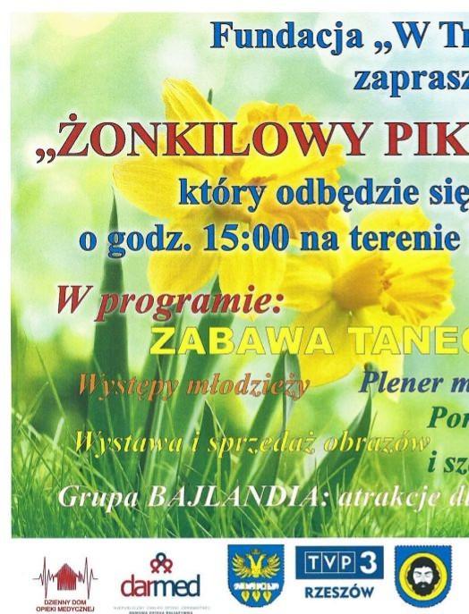 Żonkilowy piknik rodzinny w Orzechówce