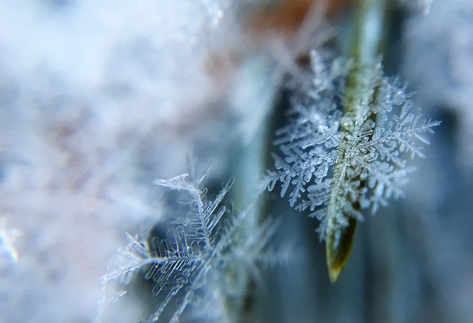 frost-1209402_960_720_1