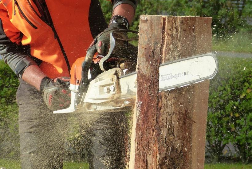 wood-1728019_960_720