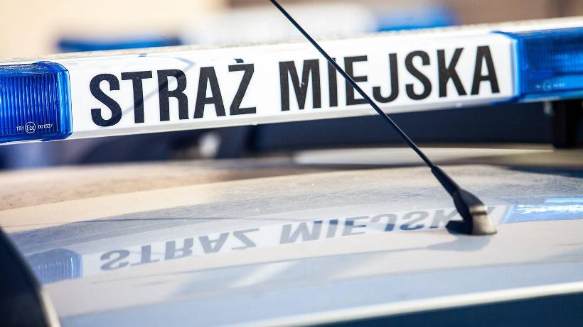 z21159283IER,Radiowoz-Strazy-Miejskiej